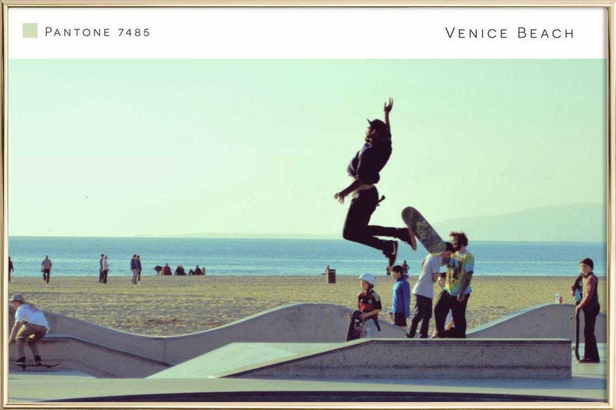 Venice Beach Pantone 7485 poster in aluminium lijst
