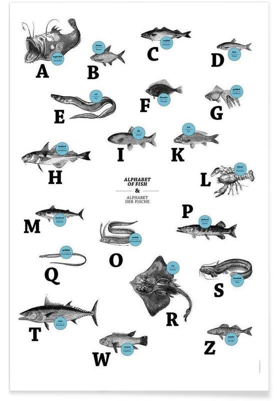 alphabet of fish, animal ABC Poster