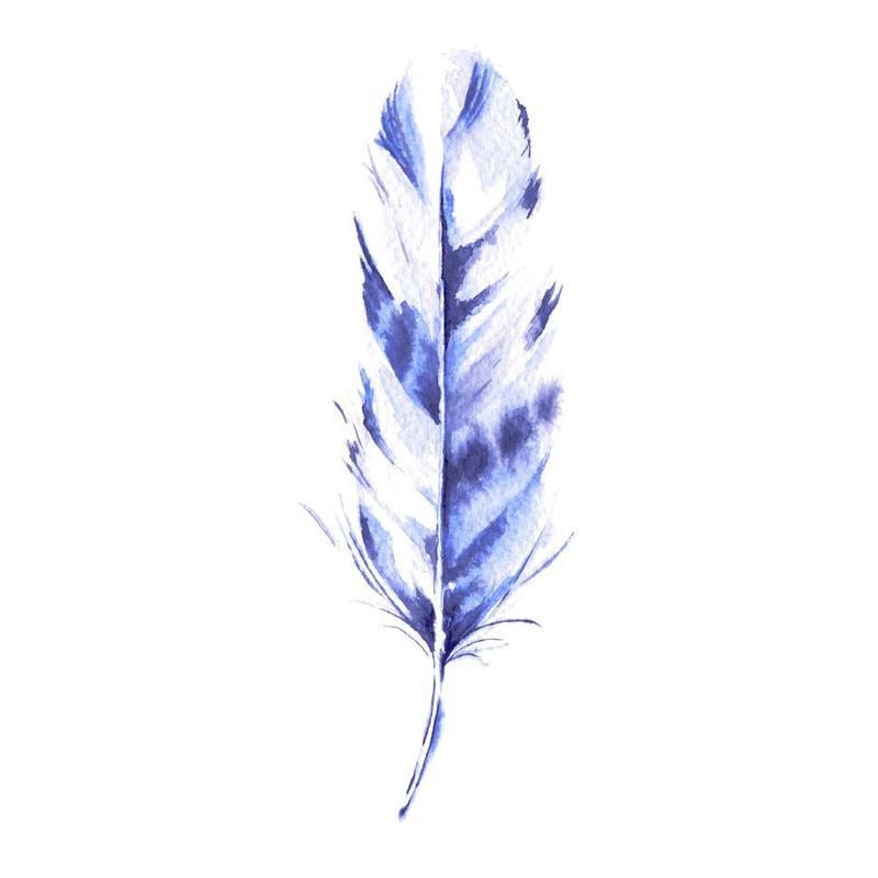 Feather -Alubild