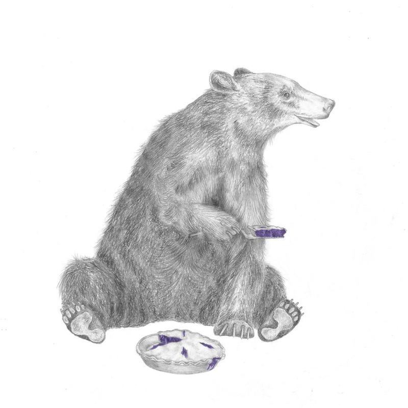 Albert Finnegan Black Bear -Acrylglasbild
