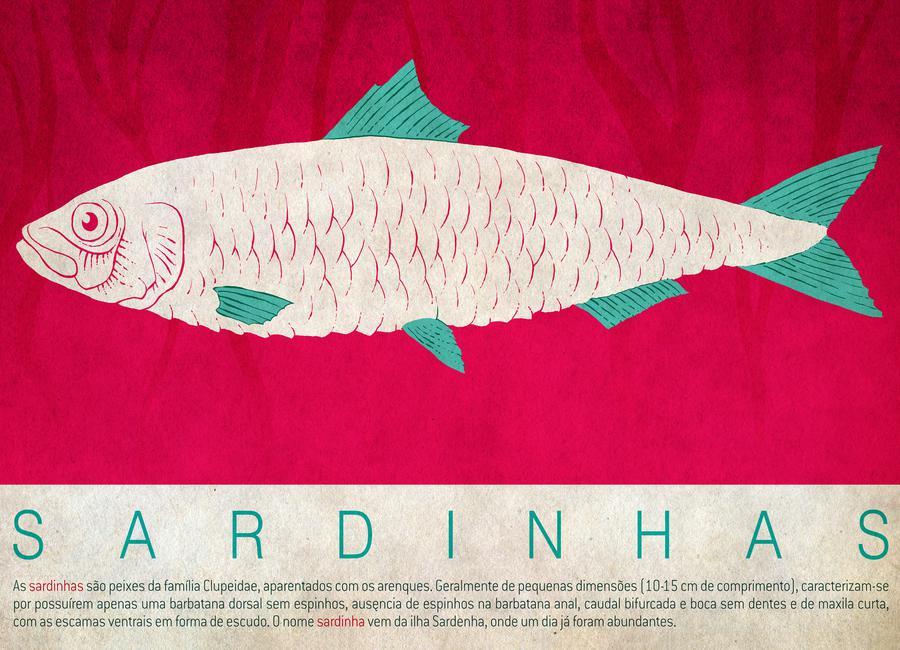 Sardinhas -Leinwandbild