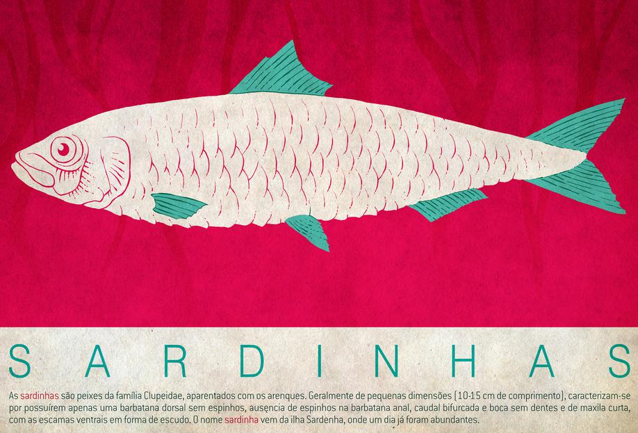 Sardinhas -Acrylglasbild