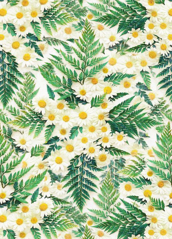 Textured Vintage Daisy And Fern -Leinwandbild