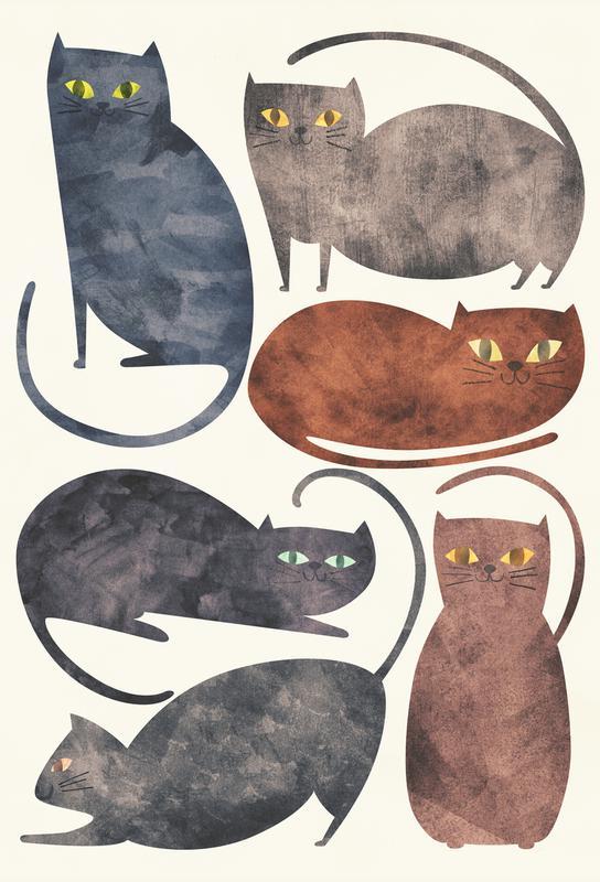 Cats Aluminium Print