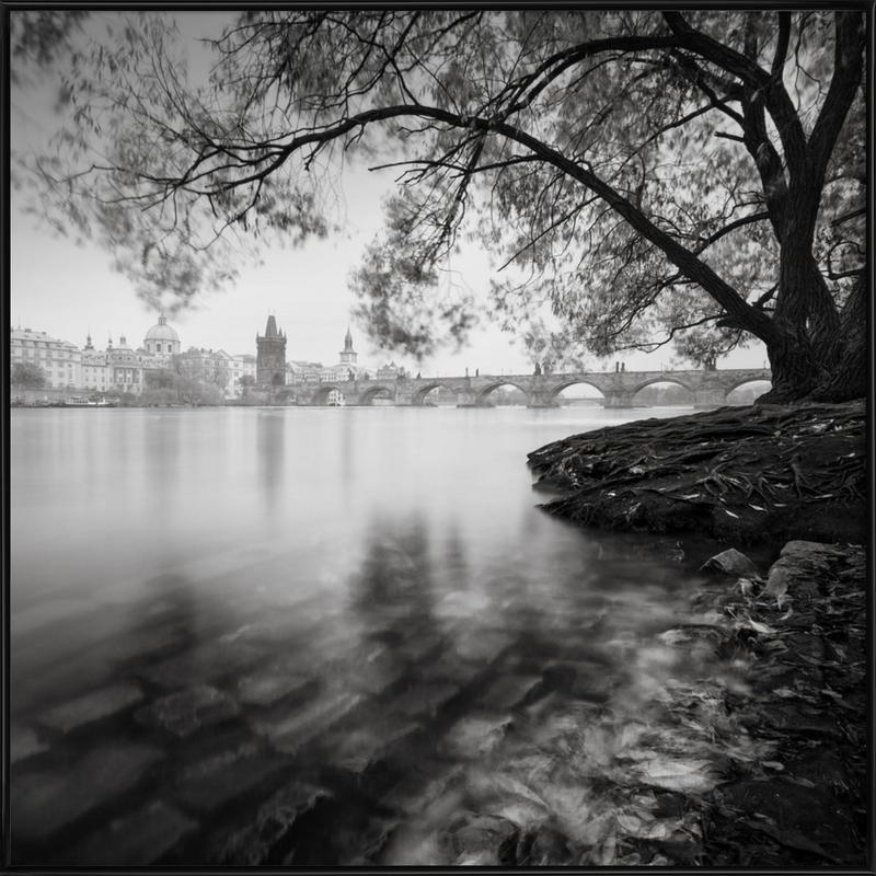 Vltava Study Autumn Leaves, Prag Gerahmtes Poster   Dekoration > Bilder und Rahmen > Poster   Mehrfarbig