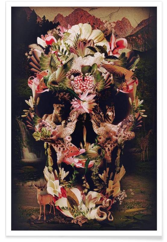 Jungle Skull affiche