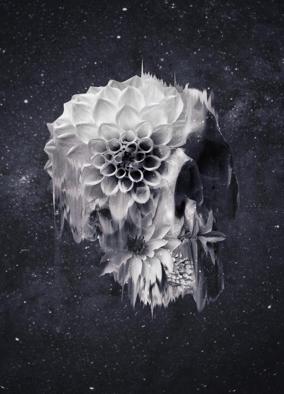 Decay Skull toile