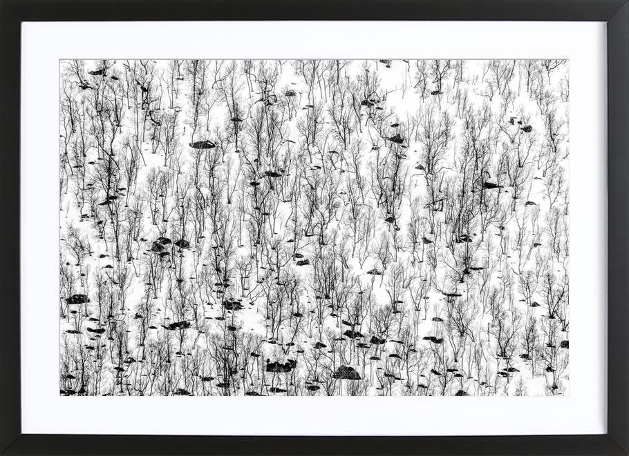 Little trees - Hilde Ghesquiere -Bild mit Holzrahmen