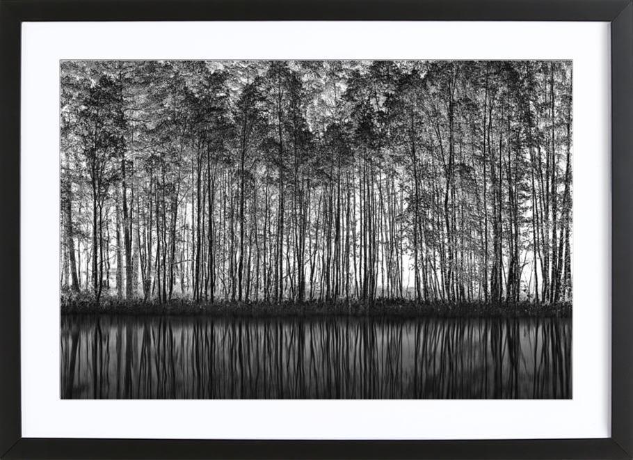 Pointillism_Nature - Roswitha Schleicher-Schwarz -Bild mit Holzrahmen