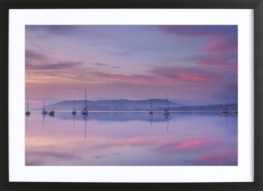 Pink Morning - Margarita Chernilova -Bild mit Holzrahmen