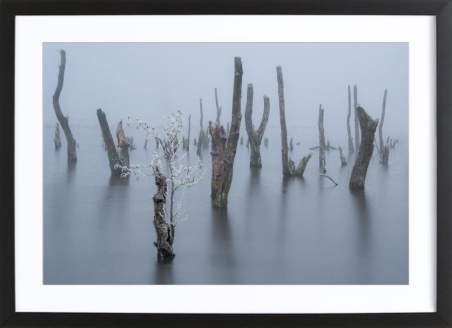Frozen and Foggy World - Piet Haaksma Framed Print