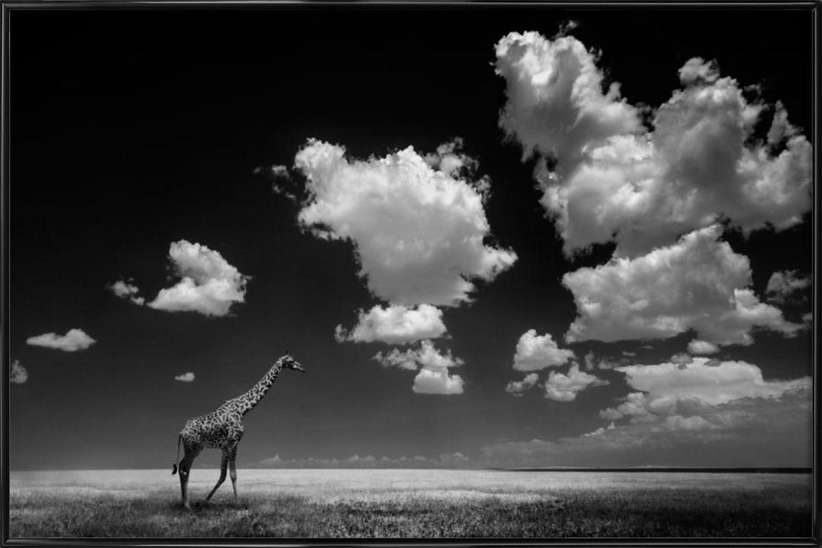 Gone With The Clouds - Alberto Ghizzi Panizza affiche encadrée