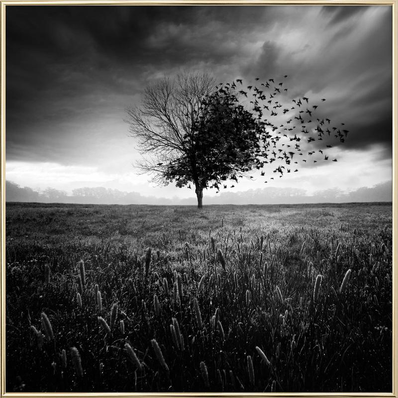 Illusion d'un printemps perdu Poster in Aluminium Frame