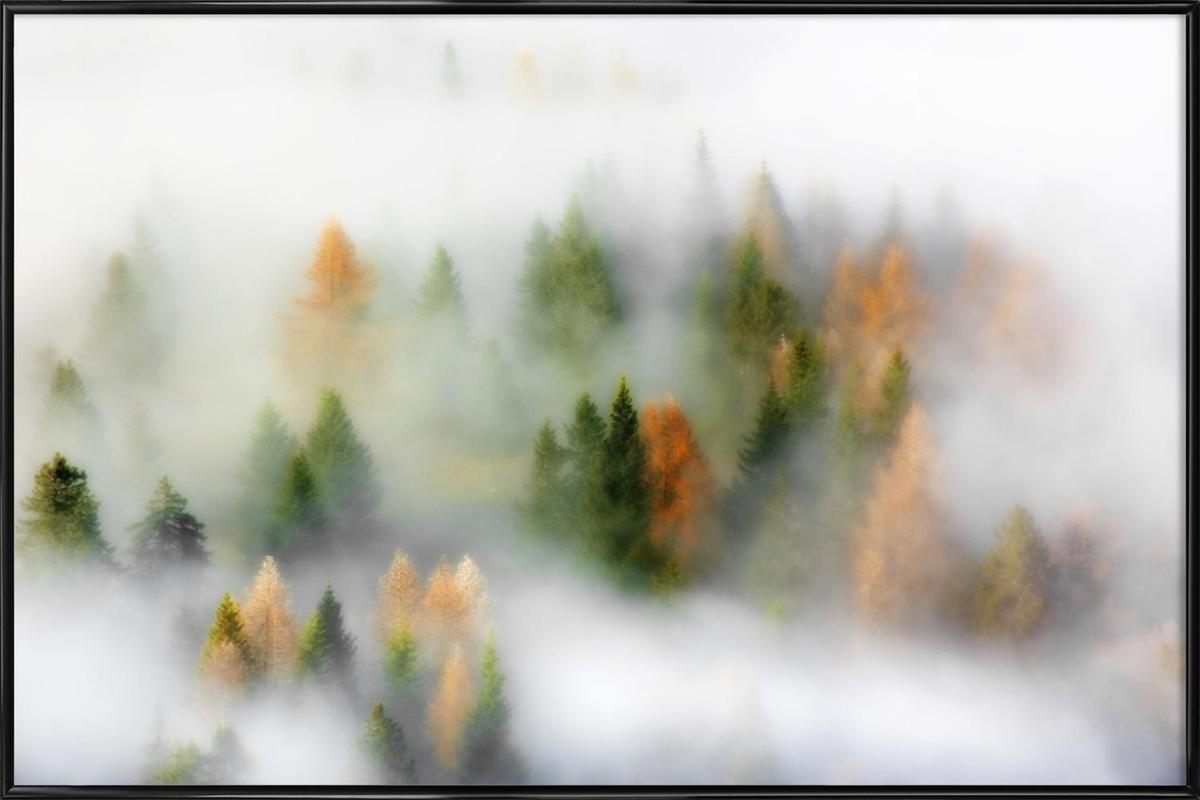 Autumn Dream - Kristjan Rems affiche encadrée