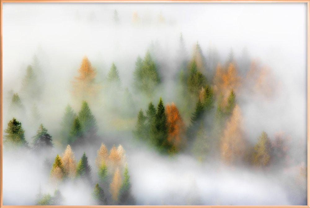 Autumn Dream - Kristjan Rems Poster in Aluminium Frame