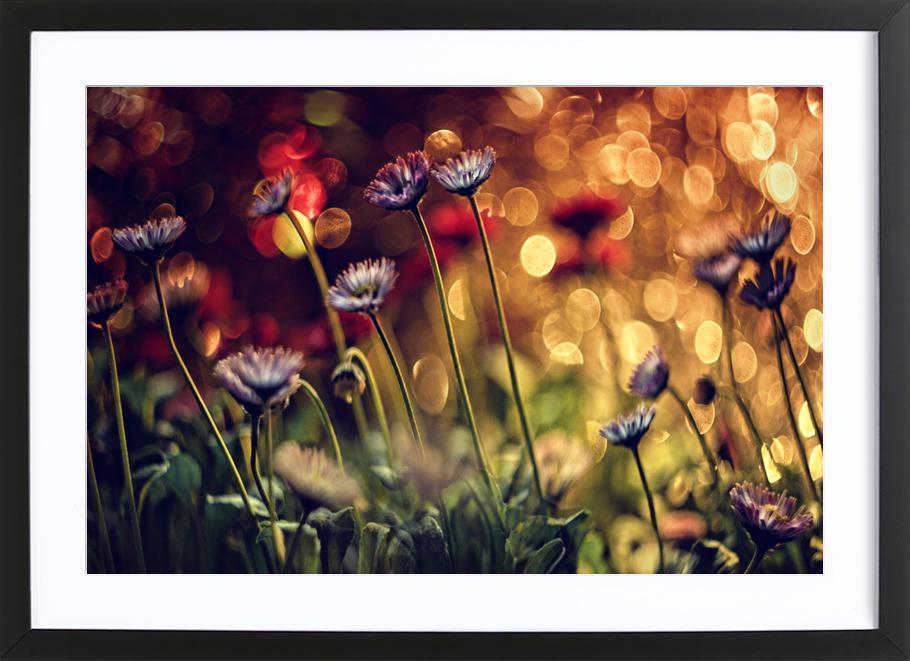 Untitled - DimitarLazarov Framed Print
