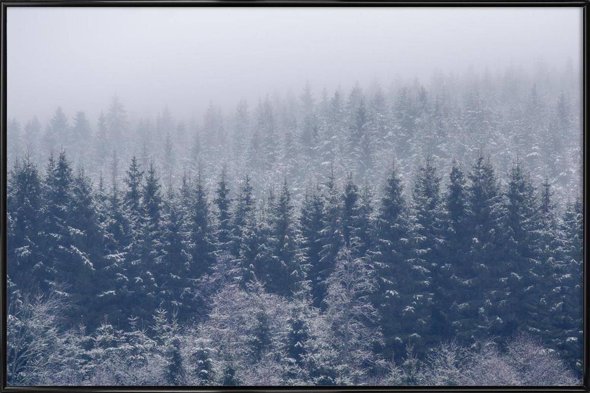 Frozen Trees - Andreas Christensen Framed Poster