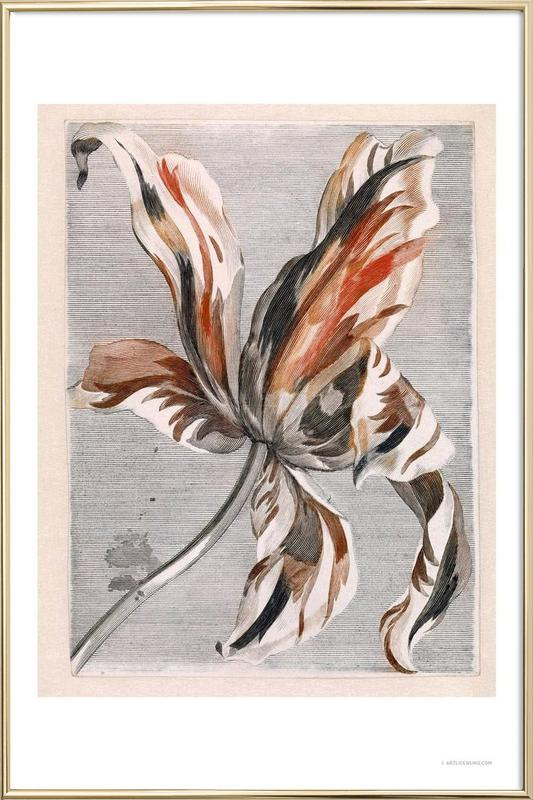 Flowers Five Poster im Alurahmen