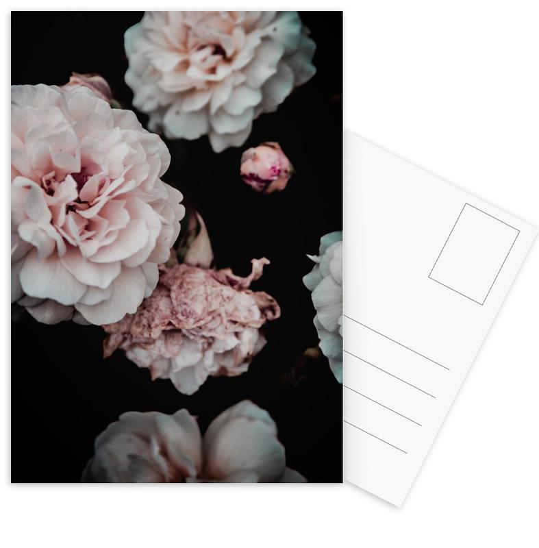 Crisp Pink Postcard Set