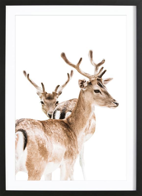 Deers II Framed Print
