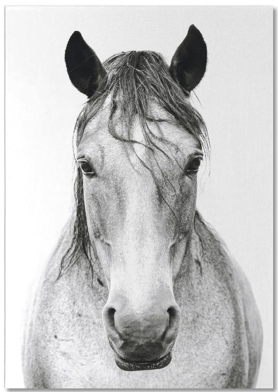Horse I Notepad
