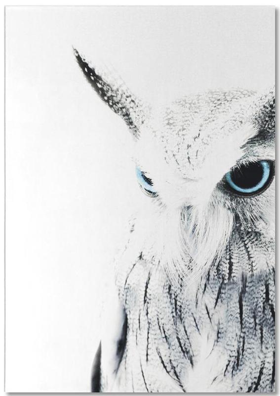 Owl II Notepad