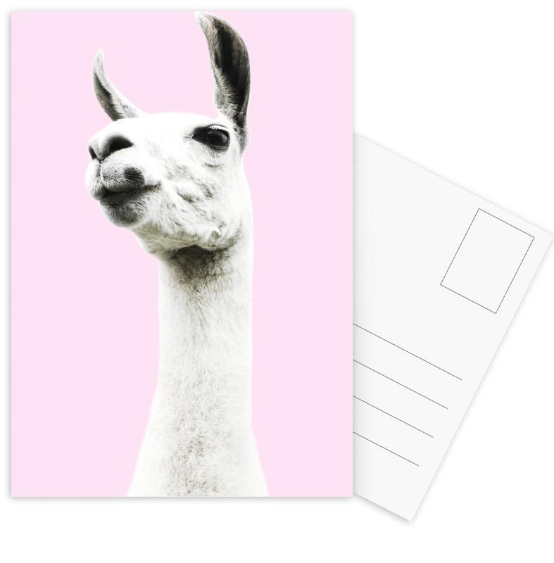 Pink Llama Postcard Set