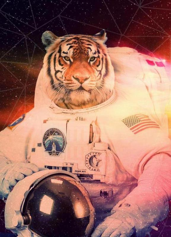 Astrotiger Canvas Print