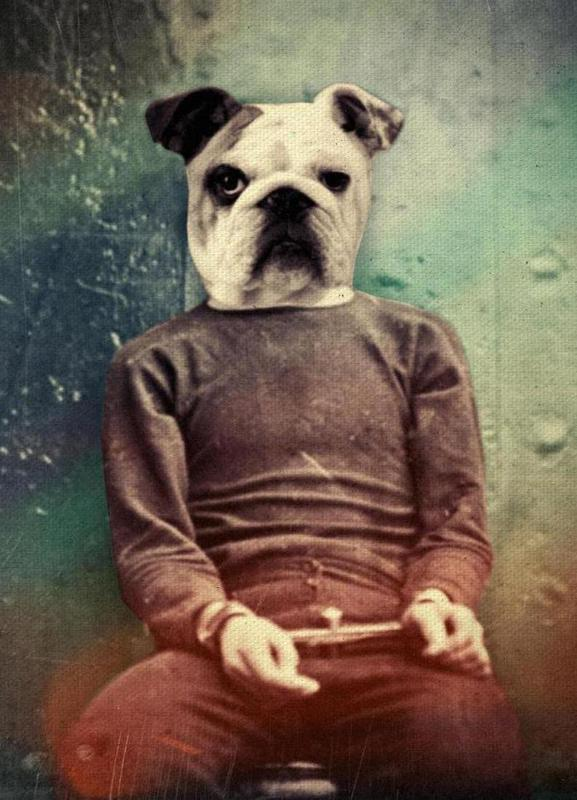 Bad Dog -Leinwandbild