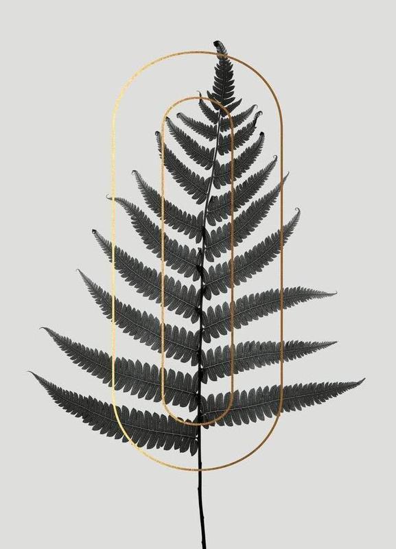 Plants O Canvas Print