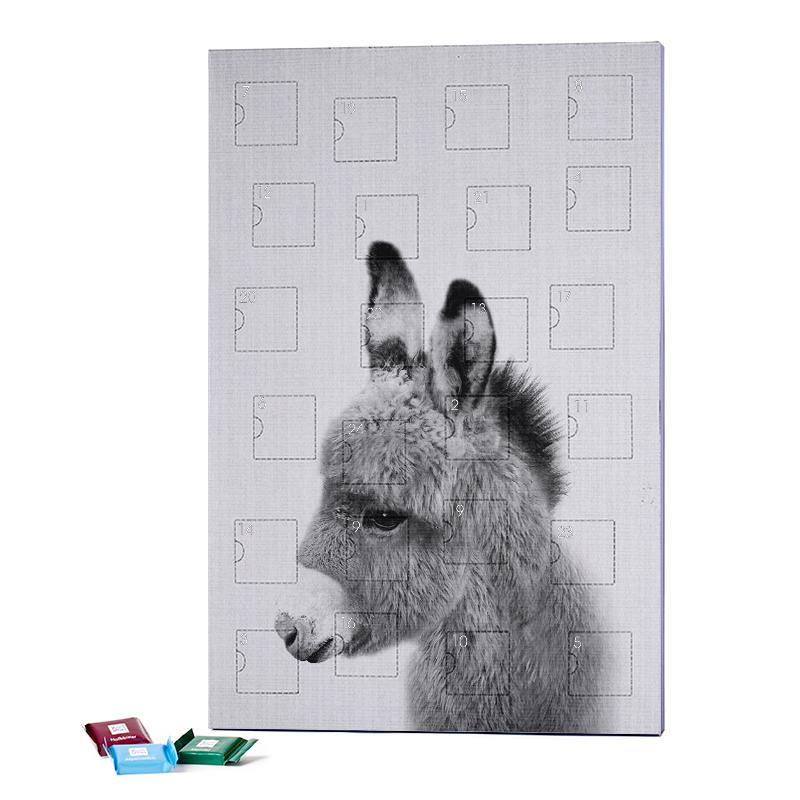 Print 64 2019 Chocolate Advent Calendar - Ritter Sport