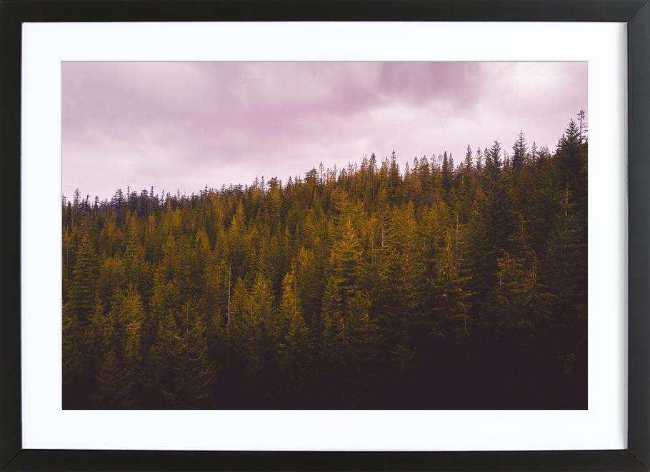 Canada 9 Framed Print