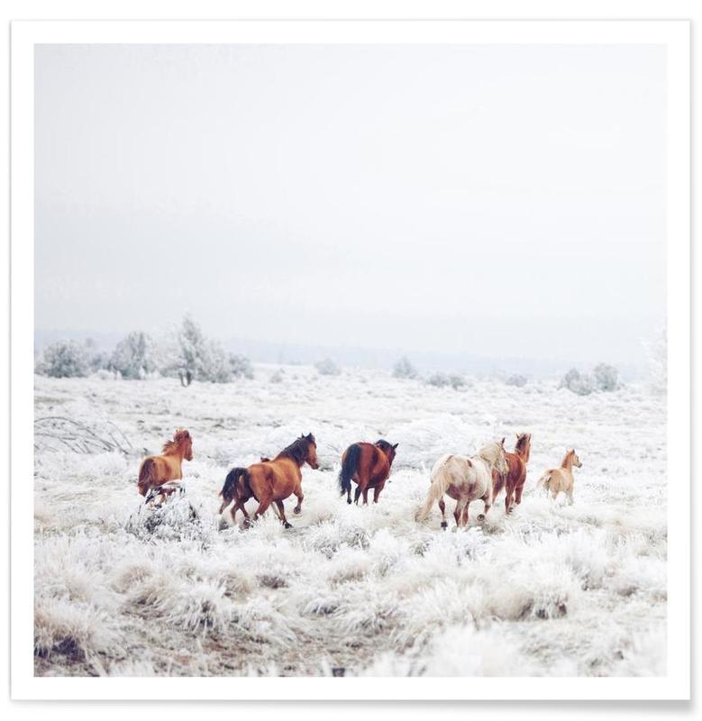 Winter Horses affiche