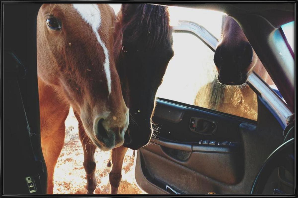 Car Horses Framed Poster