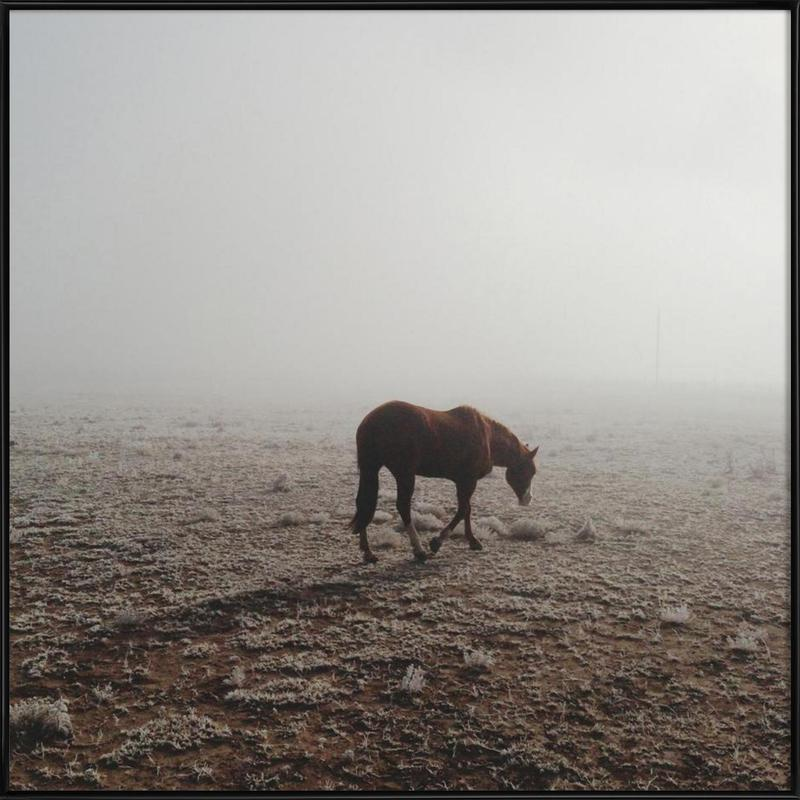 Fogged Horse -Bild mit Kunststoffrahmen
