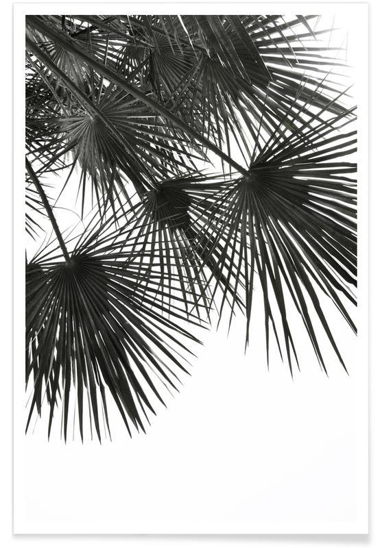 Endless Summer - Wind Plakat