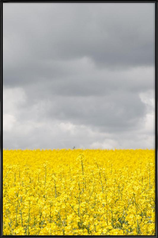 Grey Sky Meets Yellow Fields affiche encadrée