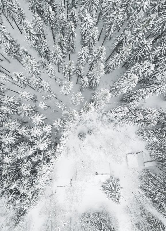Calm Winter toile