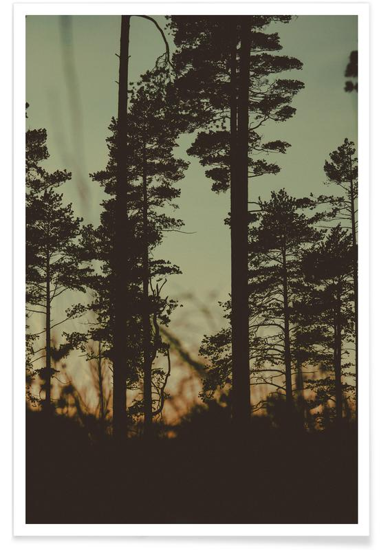 The Forest I -Poster