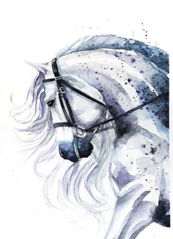 Horse portrait canvas doek