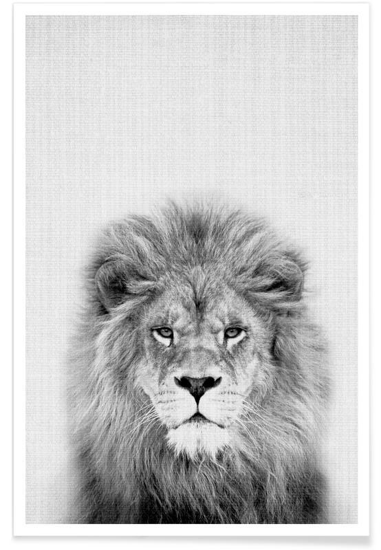 Lion - Photo en noir et blanc affiche