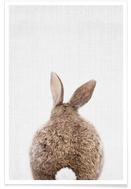 Rabbit Tail Colour Photograph poster