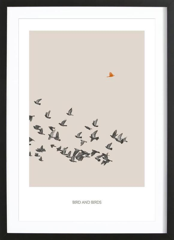 Bird And Birds Framed Print