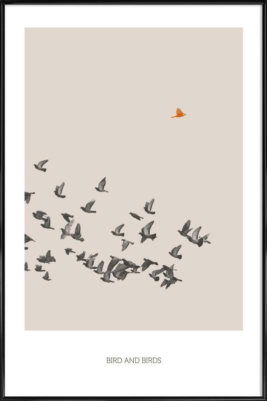 Bird And Birds Gerahmtes Poster