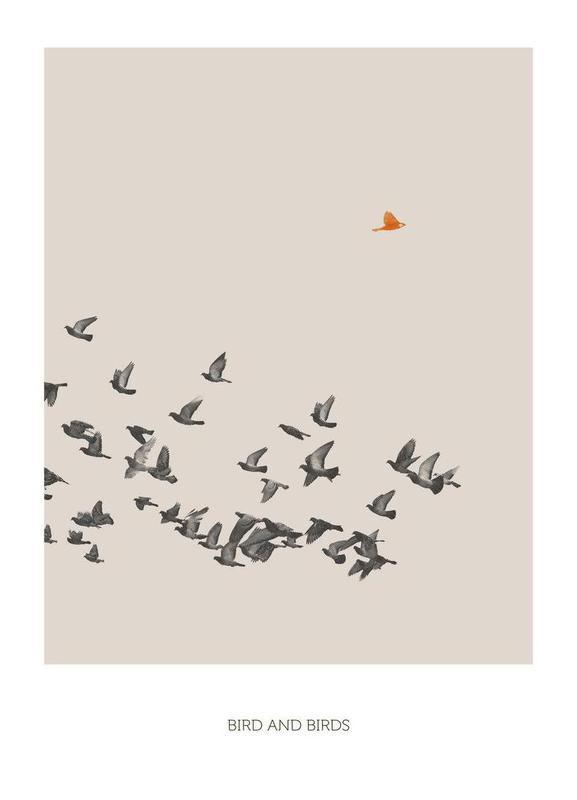 Bird And Birds Canvas Print