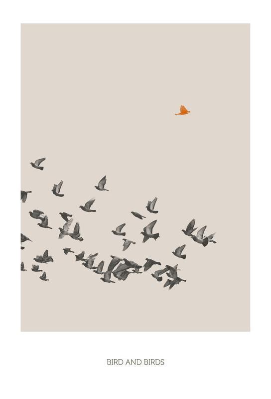 Bird And Birds Acrylic Print