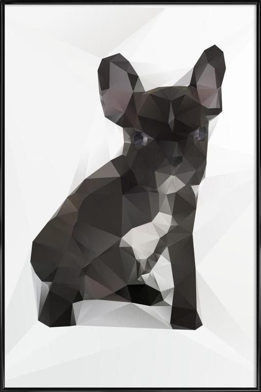 French Bulldog ingelijste poster