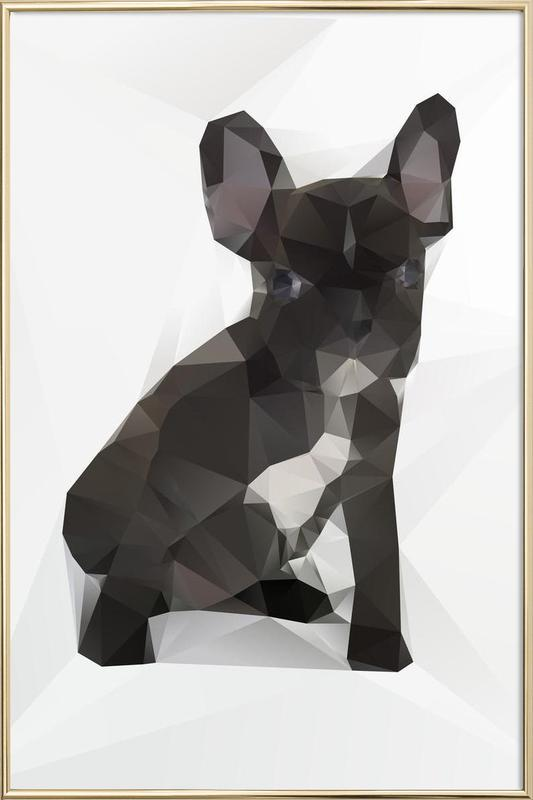 French Bulldog poster in aluminium lijst
