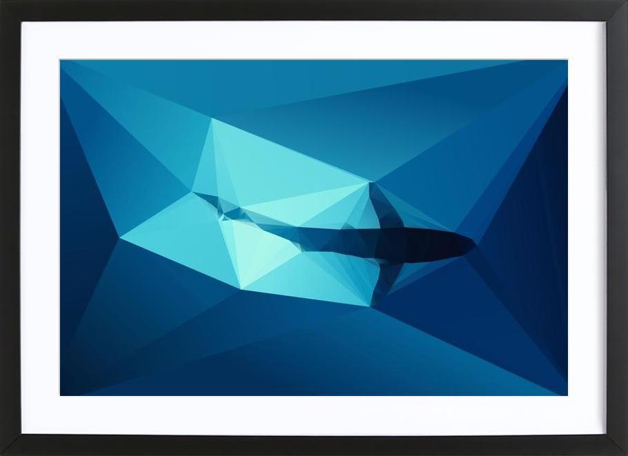 Shark 2 Framed Print