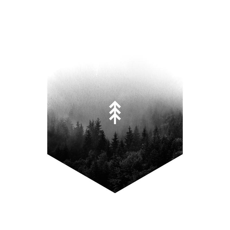 Forest Hex Acrylglasbild | Dekoration > Bilder und Rahmen > Bilder | Mehrfarbig | Aluminium